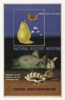 Poster features a number of different objects: a pear, a butterfly, fish, shells, and coral. Text in white, blue and black: VISIT YOUR MUSEUMS / NATURAL HISTORY MUSEUM / STATION-SOUTH KENSINGTON.