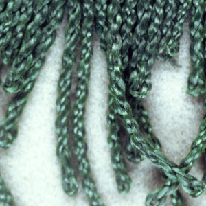 Green fringe with a soumak heading and looped and twisted skirt threads.