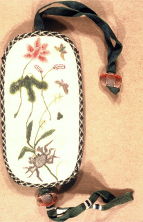 Covering for spectacle case is net embroidered in polychrome silks (tent stitch). One side showing flowers with butterflies and crab and the other, medallions containing people, architectural forms, and flowers, with spaces filled with frets. Case is edged with braid and fitted that the top and bottom with ribbons and beads.
