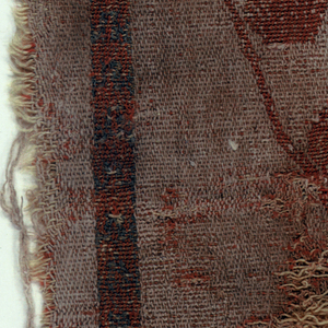 Horizontal rectangular piece showing upper right-hand section of large pearl-bordered roundel curving over one bird head (duck or flamingo?) with bunch of grapes suspended from bill (complete roundel probably contained confronted birds on either side of Tree of Life) in undyed cotton on rust-red wool ground.