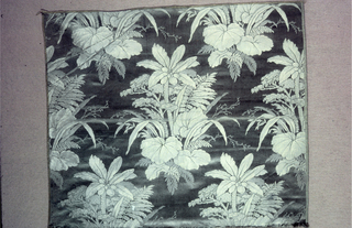 Clump of tropical plants with palm, ferns and large leaves. Design is a half drop.