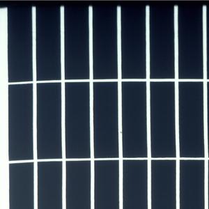 Grid of white lines on black.