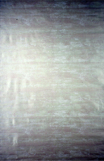 Pale green irridescent texture on grey-green cloth.