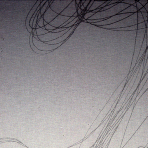 """Swirling lines like a """"doodle"""". Grey on sheer white"""