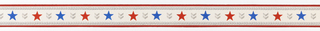 Band of red/blue stars alternating with gray chevrons between rope banding with red stripe on either side, on off-white ground. Matching ready-pasted border.