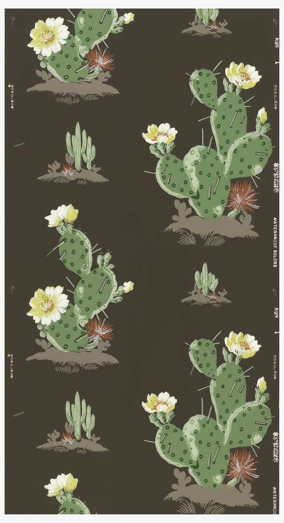 Green cactus with white and red flowers on a brown ground.