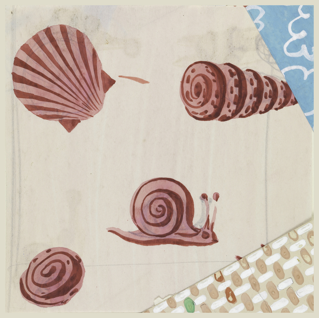 On bluish-pink background, 4 shell design in red and white.
