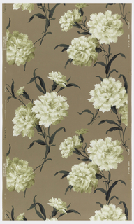 White carnations with green leaves on a taupe ground.