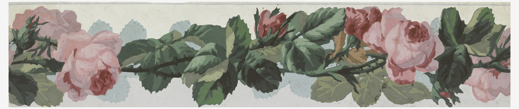 Wide band of vining pink roses and foliage. Printed in pink, green and tan on white ground.