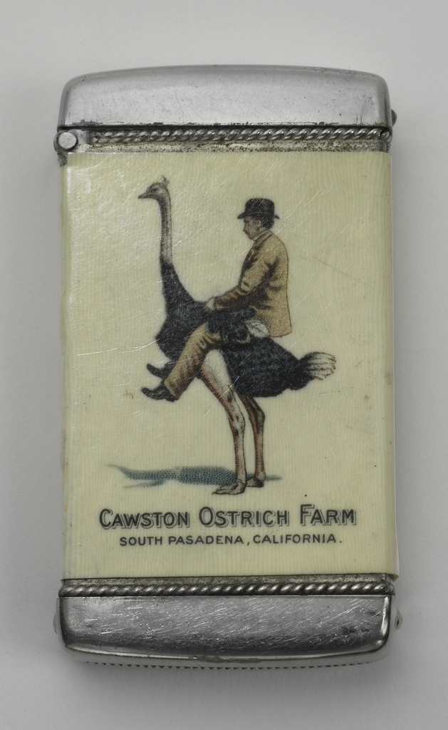 "Rectangular, with rounded corners, featuring printed advertisement for Cawston Ostrich Farm.  The front displays image of man in tan suit and black bowler hat sitting astride an ostrich, both facing left; below image is the inscription ""Cawston Ostrich Farm,"" ""South Pasadena, California.""  Reverse with image of six ostriches standing before or behind a shrub in an open field, with rail fence and trees in background.  Lid hinged at side. Striker in recessed groove on bottom."