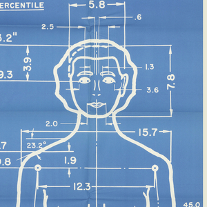 Posters, The Measure of Man (Male and Female), 1969 (first published 1959)