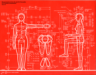 Wall Graphic, Humanscale: Measurements of 2.5, 50, and 97.5 Percentile U.S. Females, 1974–1981