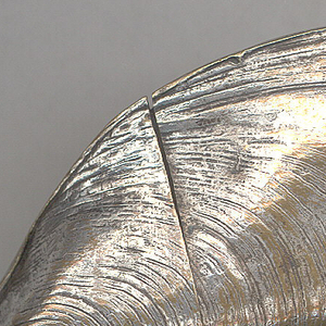 In the shape of a mussel shell, narrower end flips open, hinged on underside. Striker on underside.