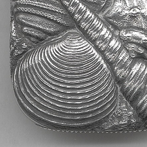 Oblong, curved corners and sides, featuring over-all raised decoration of assorted shells on body and lid, including snail, mussel, clam, and conch shells, identical on reverse. Lid hinged on side. Striker on bottom.