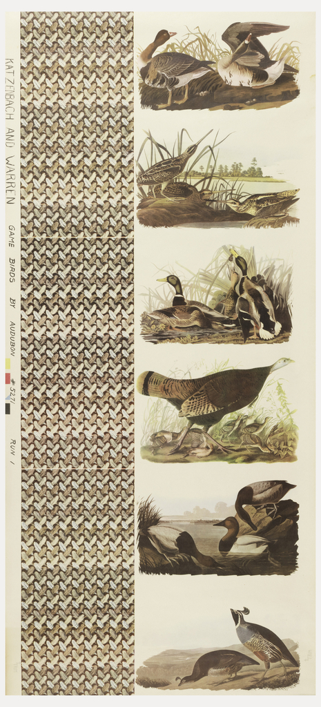 Six different images of birds reproduced from Audubon Birds of America. The images of birds as found in their natural habitat are in the right-hand column, with repeating motif of feathers in the left hand column. The birds are, from top to bottom: White-Fronted Goose, American Snipe, Mallard Duck, Great American Hen, Canvas Backed Duck, and California Partridge.