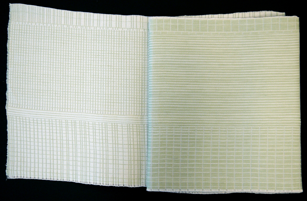 Irregular pattern of white grids and lines on light green.