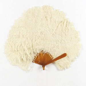 Brisé fan. Celluloid stick with white, uncurled ostrich feathers.