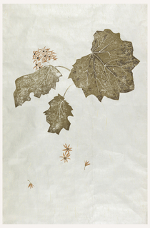 Large-scale leaves and orange daisy-like flowers printed on fibrous paper over foil.