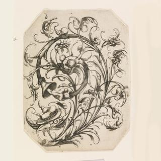 Print, Plate 6, from Die Folge der phantastischen Schmucksträβe (Suite of Fantastic Ornamental Bouquets)