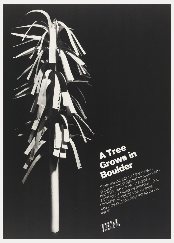On black ground, strips of paper adhered to a stick, like leaves from a tree. In white, lower right: A Tree / Grows in / Boulder…IBM [logo].
