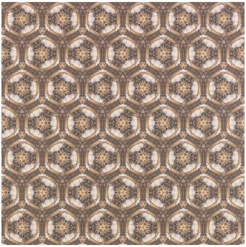 Repeating hexagonal shapes with intricate interplay of light and shadow. Small details of flowers visible in center of hexagon. Printed in shades of tan and brown.