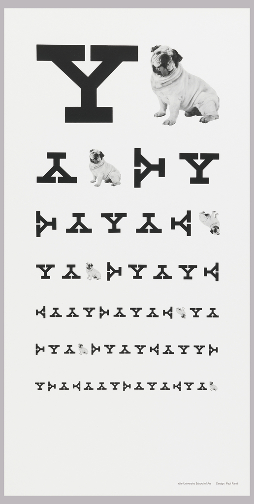 Black and white poster resembling a Snellen eye examination letter chart, with letters and images largest at top and decreasing in size below.  Upper left quadrant a black, bolded Y and to its right a black and white photograph of a bull dog, Yale's mascot. For six lines underneath this, alternating black Y's in different directions including upside down, lying left, lying right, and right side up and bull dog photographs decreasing in size and increasing in number.