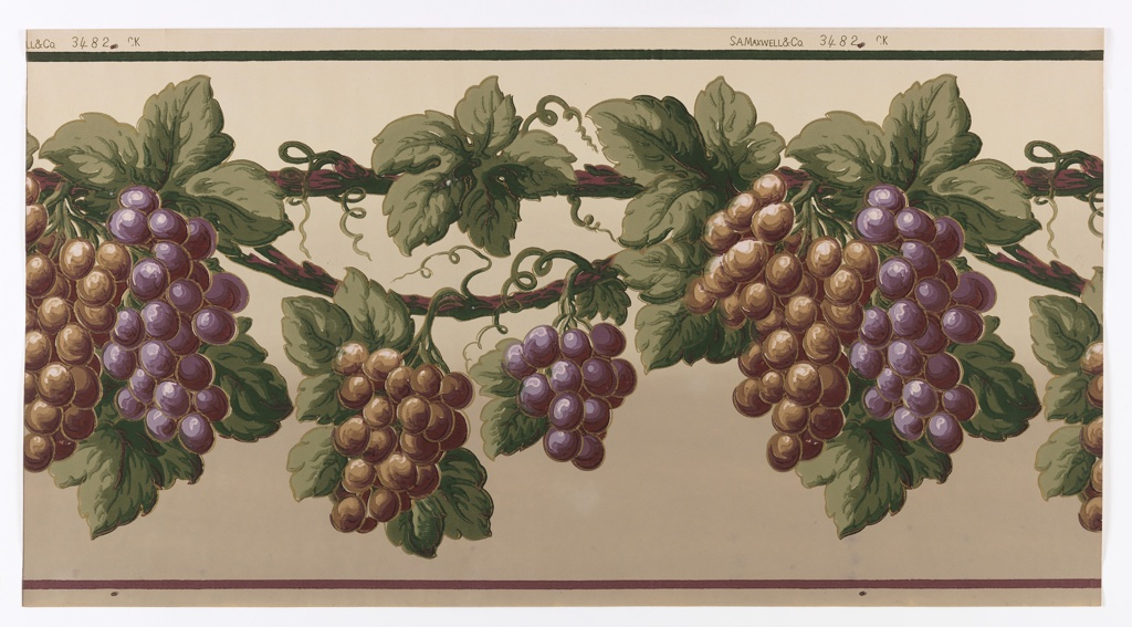Large bunches of grapes, both purple and brown, are hanging from grape vine. The top vine is pulled taut, while the lower vine is swagged. The background shades from off-white to tan at the bottom.