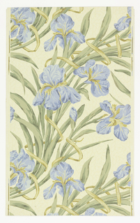 Realistic rendering of purple-blue iris, green leaves, on cream ground.  NOTE: 34 duplicates in W131 (61:1:1)