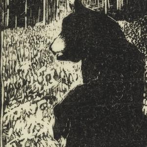 Standing bear in woods printed in black ink.