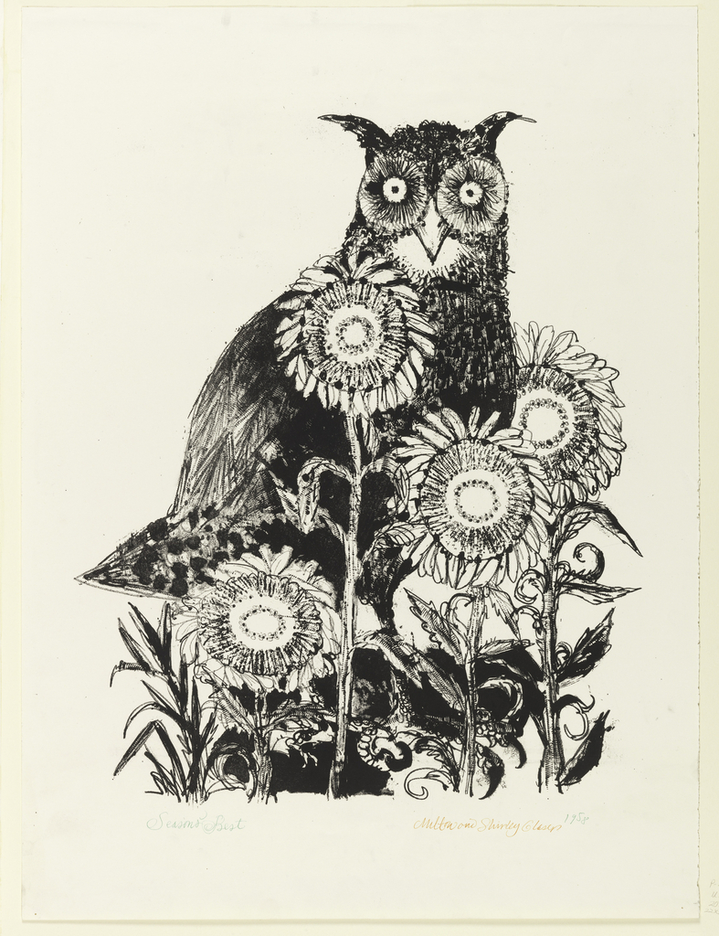 An owl, facing frontally, stands among a clump of four sunflowers.