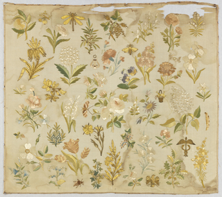 Isolated flowering plants and insects embroidered in multicolored silk and a variety of metallic yarns filling a rectangle of ivory silk. In the center is a naturalistic rose surrounded by concentric circles of other flowers including tulip, pansy, carnation, grape vine, oak branch, etc. Among the plants and flowers is a butterfly, beetle, centipede, dragonfly, winged aegis with twined serpents, and an eagle clutching arrows.