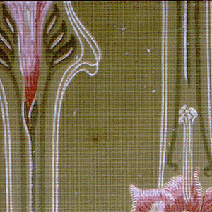 Floral stripe; pink flowers on green stripe. Printed on green plaid background.