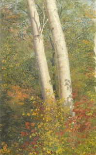 The trunks of two birch trees stand amid autumn foliage. Red and yellow leaves partially obscure the lower section of the trees. Sketch unfinished along right side.