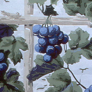 Grape and trellis design. Rustic light tan trellis supports forming perfect squares, from which hang bright blue grape clusters. Printed on off-white ground.